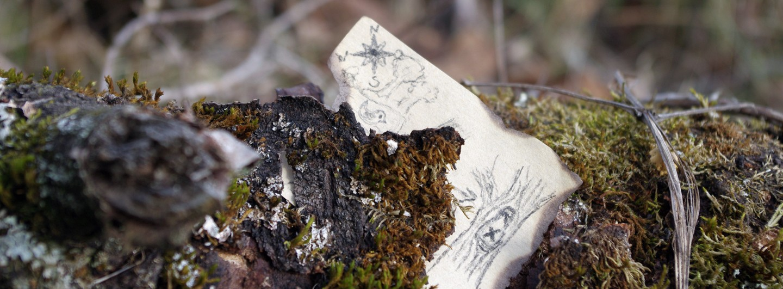 Eine Miniaturschatzkarte steckt in vermooster, abplatzender Baumrinde.