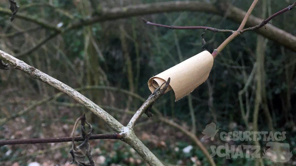 ein kleiner brauner Zettel ist um einen Zweig gerollt.
