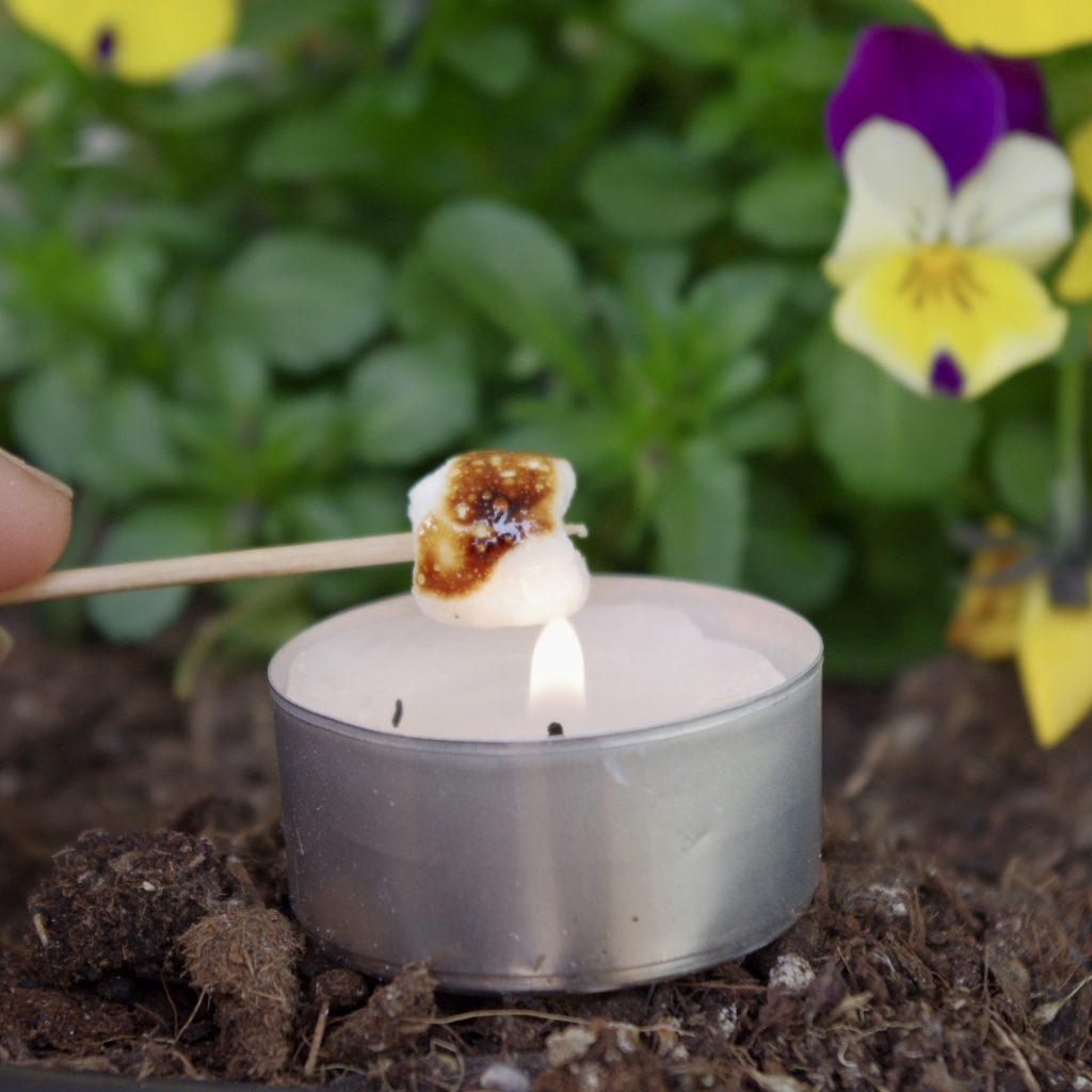 Ein Mini-Marshmallow ist auf einem Zahnstocher aufgespießt und wird über einem Teelicht gegrillt. Im Hintergrund unscharf Stiefmütterchen.