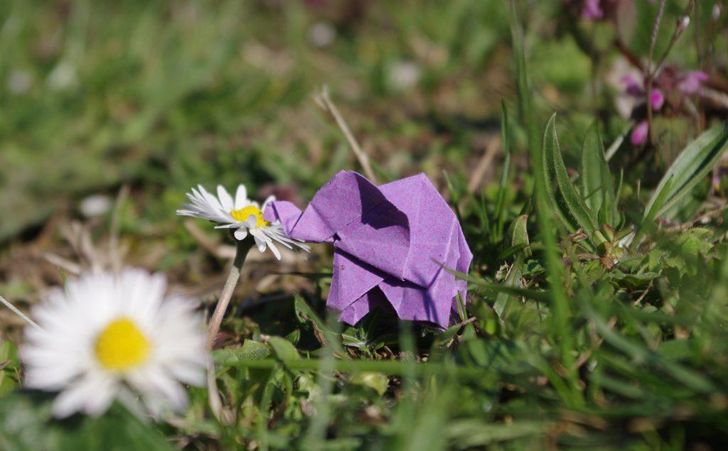 Ein lila Mini-Origami-Elefant riecht an einem Gänseblümchen.