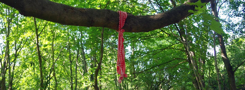 Eine rote Schliefe mit weißem Muster hängt an einem Ast.