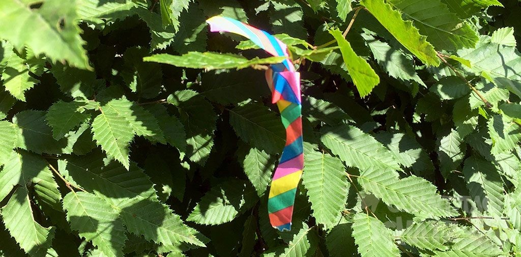 Eine kleine bunte Luftschlangen-Schleife im Gebüsch.