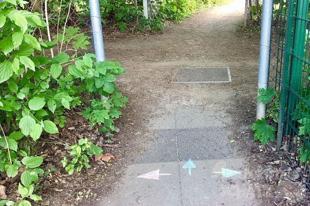 Auf einen gepfalsterten Weg sind mit Straßenmalkreide drei Pfeile gemalt. Ein roter nach links, ein blauer geradeaus und ein grüner nach rechts.