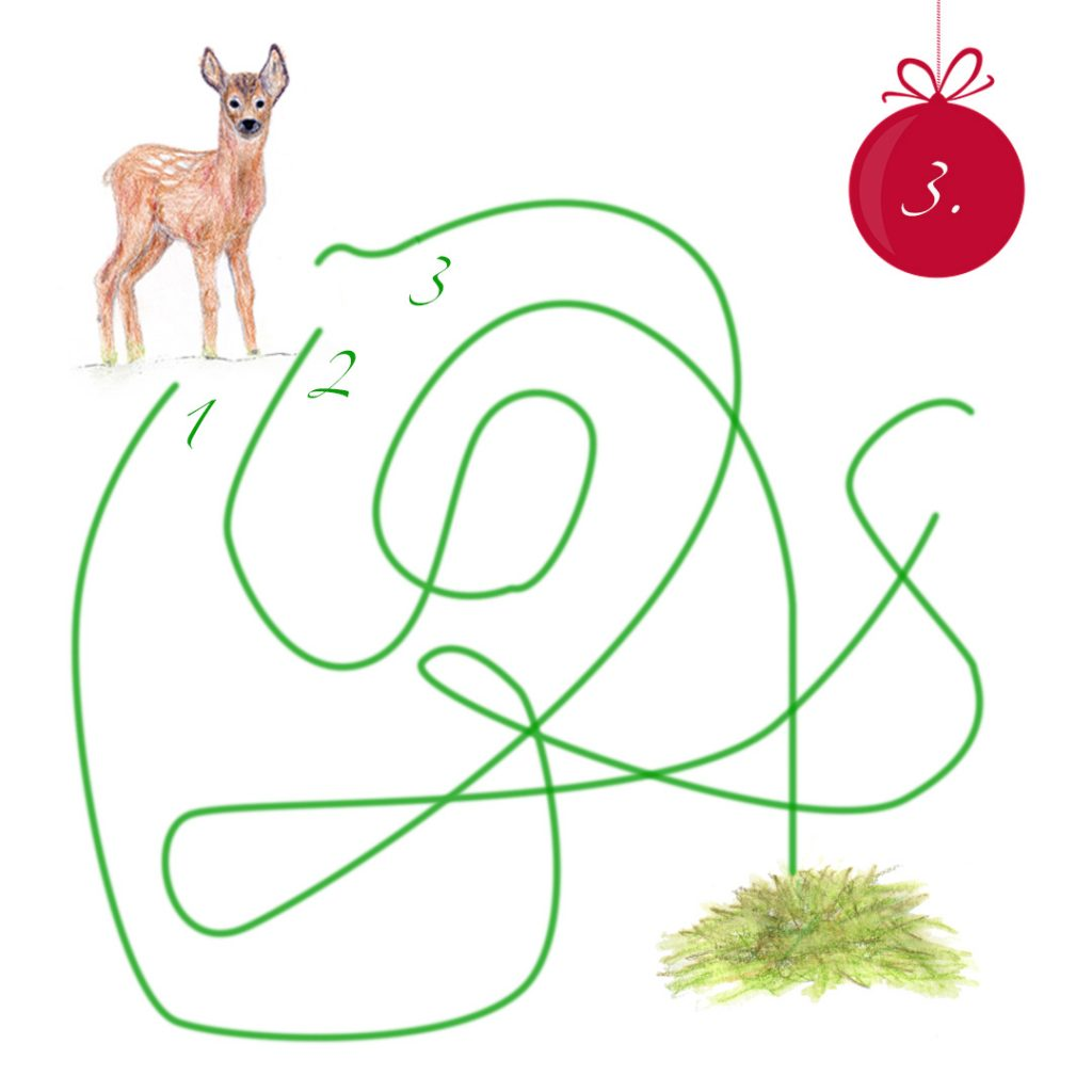 Oben links steht ein gezeichnetes Reh. Von ihm weg führen drei geschwungene grüne Linien, von denen eine im Heustapel unten rechts im Bild ankommt.  Oben rechts eine rote Christbaumkugel mit einer 3.