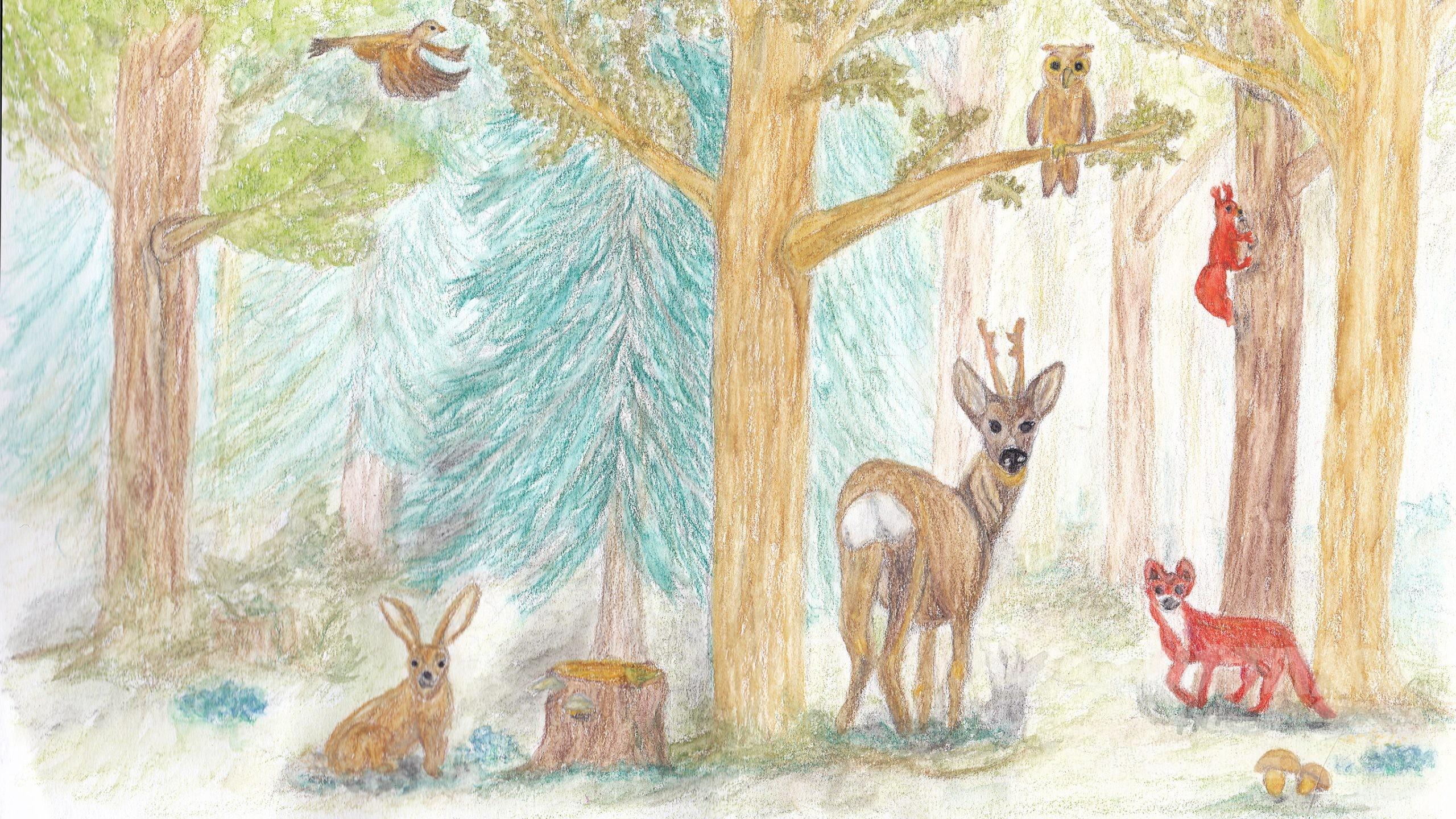Fehlersuche im Wald